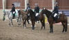 pony sport