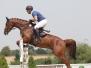 Šampionát mladých koní - 5.-9.8. - Martinice